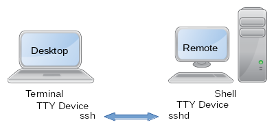 SSH-TTY-Example.png